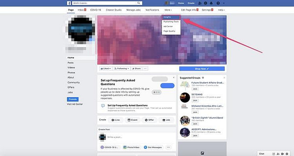 Facebook insights option